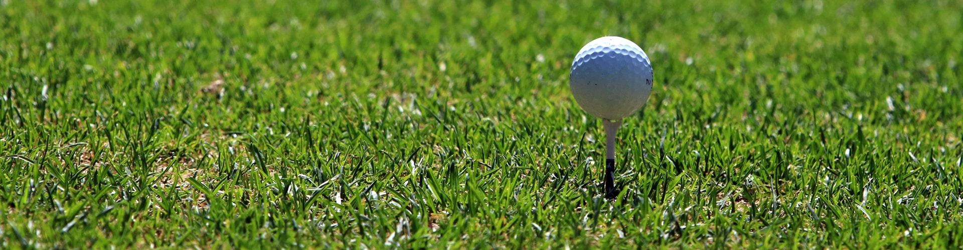 Golfball im Rasen